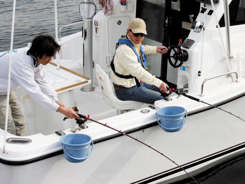 Boat Deck Cover Holder 12 Sailboat Gray Top Gun